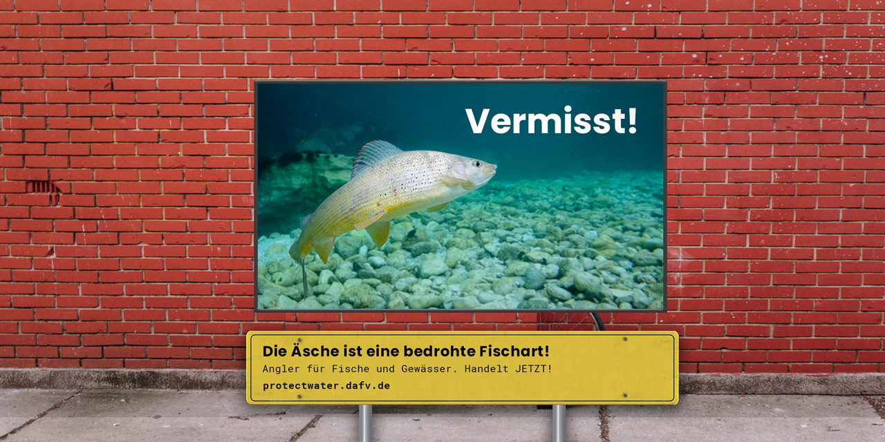 Dafv Ev Deutscher Angelfischerverband Mama Lime 800 Ml Protectwildlife Aesche Banner
