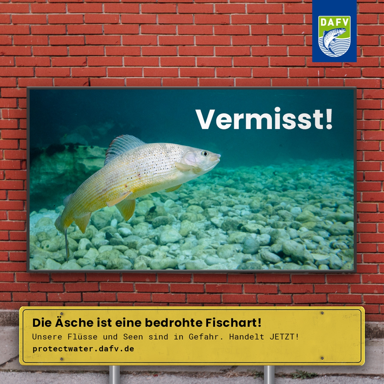 Kampagne #ProtectWater
